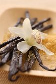 Vanilla Beans, Orchid and Raw Sugar
