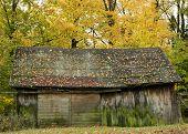 Wood Barn In Autumn