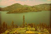 Lake Kivu And Lush Garden Vintage