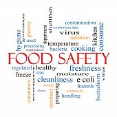 picture of hazard  - Food Safety Word Cloud Concept with great terms such as hazards e coli cooking and more - JPG