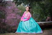 picture of hanbok  - Hanbok - JPG