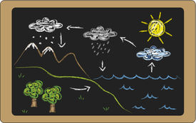 pic of transpiration  - a illustration of water cycle on blackboard - JPG