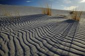 Sand ripples in desert USA
