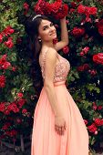 Beautiful Bride In Luxurious Dress Posing Beside A Rose's Wall
