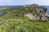 French Head promontory, Twillingate