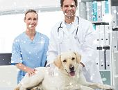 Veterinarians with dog in clinic against snow falling