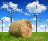 Big straw bale on farmland