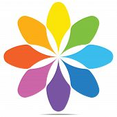 pic of color wheel  - Color wheel petal with shade of colors - JPG