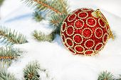 red christmas ball on winter tree with snow
