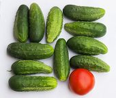 vegetables - cucumbers and red tomato