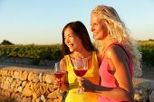 People drinking red rose wine at vineyard. Happy women holding glasses of red wine or rose enjoying a glass outside at sunset.