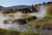 Natural Hot Springs For Bathing In Yellowstone Park