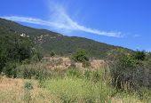 McMenemy Trail