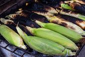 Grilled Corn On Stove, Thai Grilled Corn.