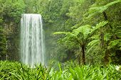 Tropical Cascading Waterfall