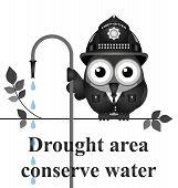 Drought Area