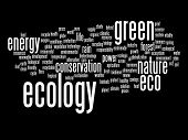 High resolution concept or conceptual abstract green ecology and conservation word cloud text isolated on background