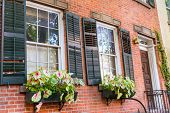 West Village in New York Manhattan flowers window facades USA NYC