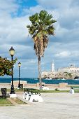picture of el morro castle  - The castle of El Morro in Havana with a beautiful park with tropical palm trees on the foreground - JPG