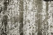 Grunge Concrete Material Background Texture Wall Concept