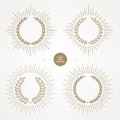 Vector set of laurel wreath with sunburst line rays