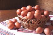 Fresh Hen Eggs