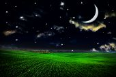 Green field under night sky with moon and stars. Beauty nature background