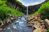 Picturesque waterfall Svartifoss in Skaftafell National Park of Iceland. Black basalt columns frame the water jet