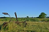 Old vintage plow in long grass