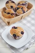 Home made Blueberry Muffins