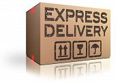 Express Delivery Webshop Package