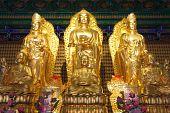 Gold Buddha And Kuan Modeling Chinese Style_