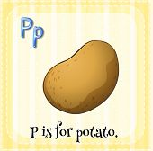 Illustration of a letter P is for potato
