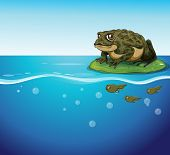 picture of tadpole  - Illustration of a frog and three tadpoles in the water - JPG