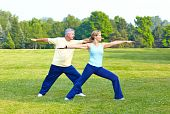 stock photo of old couple  - Happy elderly seniors couple working out in park - JPG