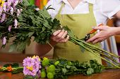 picture of apron  - Cropped image of female florist in apron cutting flowers