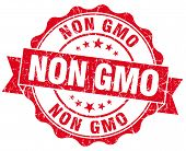 Non Gmo Red Grunge Seal Isolated On White