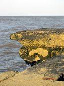 Rock From Pier