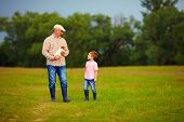 stock photo of grandfather  - grandfather and grandson walking through the green field with puppy in hands - JPG