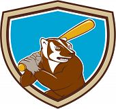 image of bat  - Illustration of a badger baseball player holding bat batting set inside shield crest on isolated background done in cartoon style - JPG
