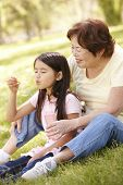 stock photo of granddaughter  - Asian grandmother and granddaughter blowing bubbles in park - JPG
