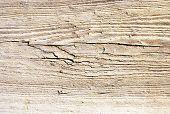 texture wood saw cut