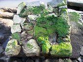 Coast Rocks With Moss
