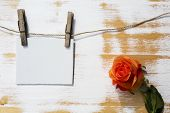 stock photo of clotheslines  - white paper sign hanging on clothesline with clothespins and an orange rose - JPG