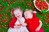 picture of strawberry  - Child eating strawberry - JPG