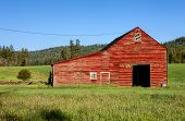 stock photo of red barn  - A large red barn in the middle of a green field south of Tensed Idaho - JPG