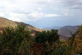 Great Smokey Mountains Landscape