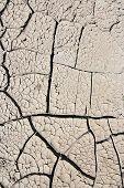 Dry Season - Dried Ground