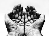 foto of palmistry  - Two hands - JPG