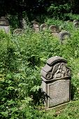 Gravestones in the old 400-year-old Jewish cemetery in Ozarow. Poland